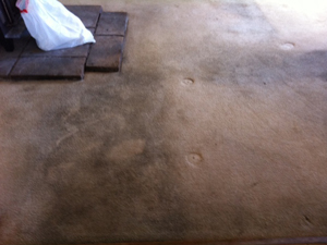 Heaven S Best Carpet Cleaning See The Before After
