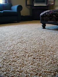 ensure you receive the quality carpet cleaning you 39 re looking for