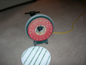 best carpet shooer machine